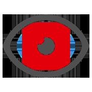 Icon Auge Biometrie